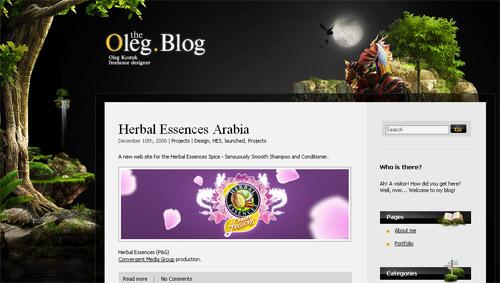 分享21个精美的博客网站设计案例