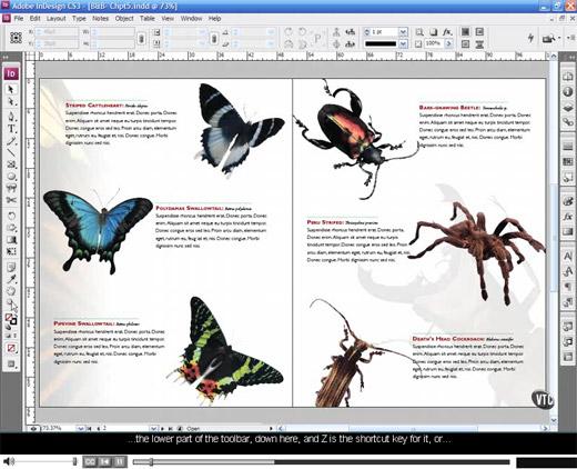 Book editing software