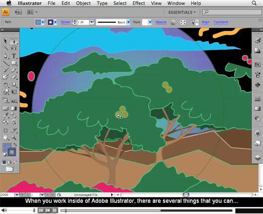 Adobe Illustrator CS4 Training Videos