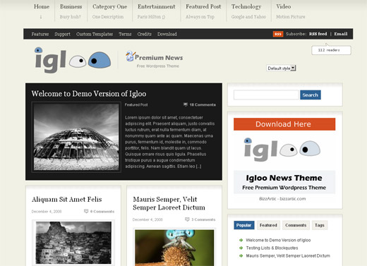 Igloo News 2.0 Free WordPress Theme