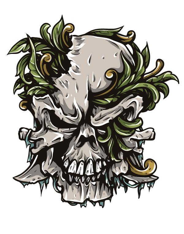 Free Skull Video