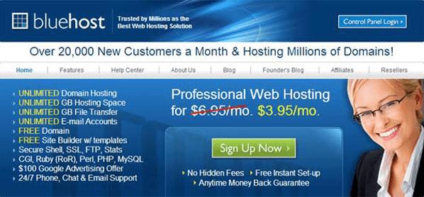 Bluehost homepage thumb