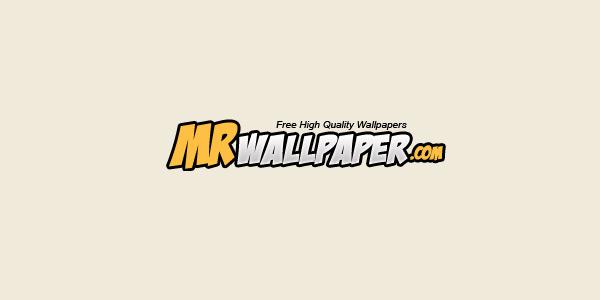 Mr. Wallpaper