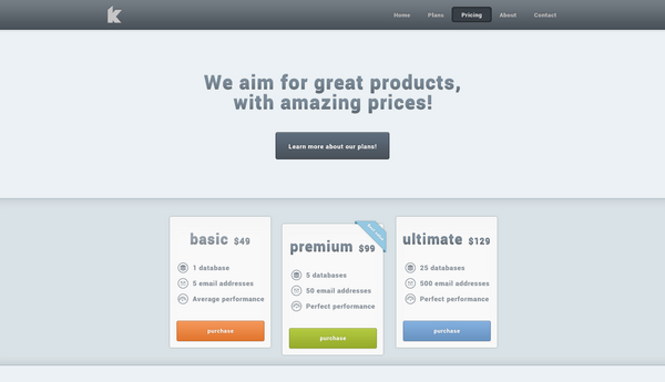Pricing in Portfolio Website Design
