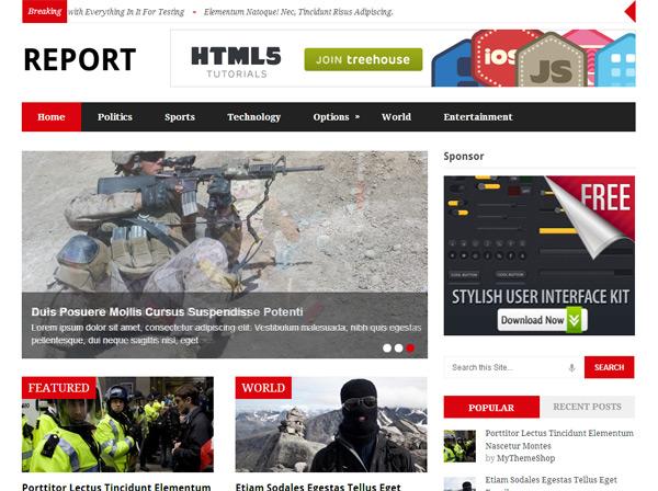 Report WordPress Theme