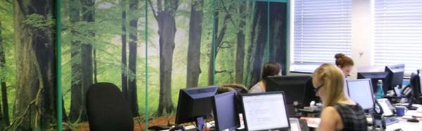 Green Office Wallpaper