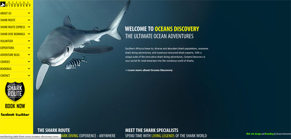 Oceans Discovery