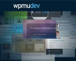 wpmu wordpress themes