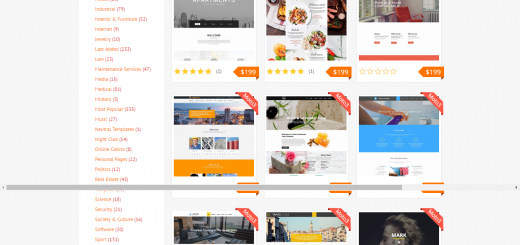 fun themes from MotoCMS