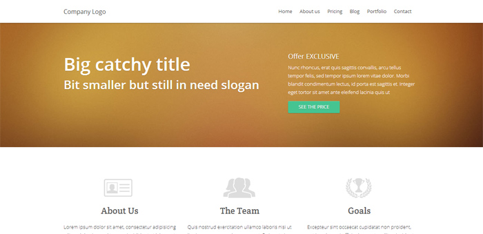 Generic HTML Template