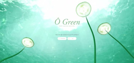Eco Style Web Design