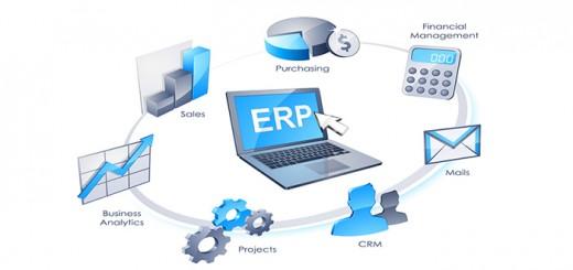 ERP in Web Development