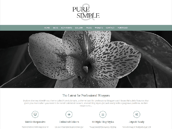 puresimple_minimal wordpress themes
