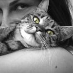 cat lady stock image