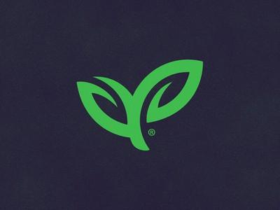 Dual leaf logo