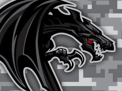 Ferocious black dragon