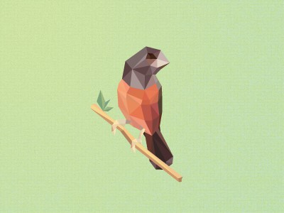 Polygon Bird design