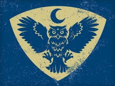 Mystic owl design