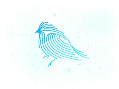 Blue lined bird