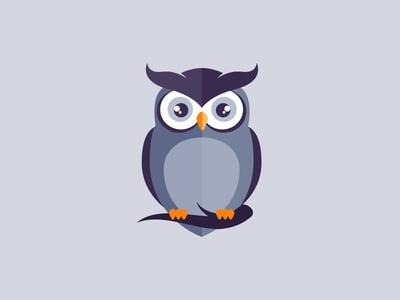 Wide-eyed owl design