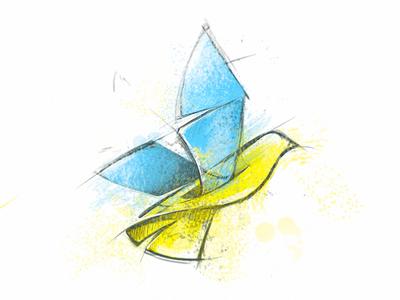 Colorful pencil sketched bird