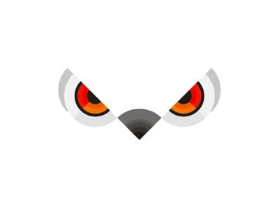 white owl eyes