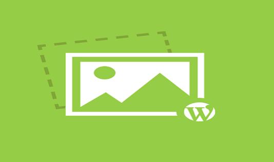 Optimize Your WordPress Images